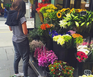 flowers, colors, and style image