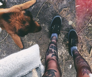 tattoo, dog, and vans image