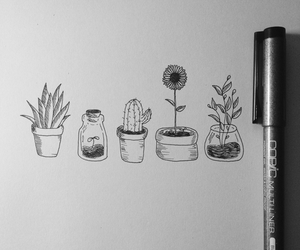 art, plants, and drawing image