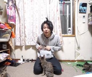 cats, cool, and kawaii image
