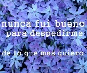 flowers, frases, and violet image