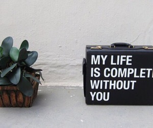 plants, life, and quote image