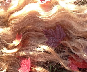 hair, sunlight, and blonde image
