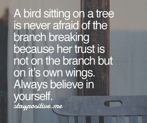 quote, bird, and saying image