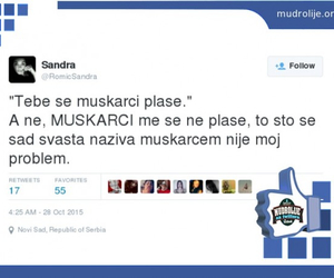 balkan, text, and twit image