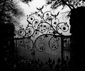 black and white, gate, and gates image