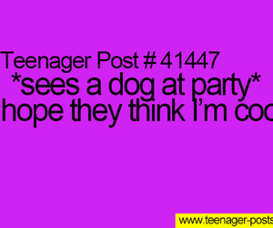 cool, dog, and funny image