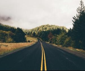 road, forest, and landscape image