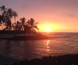 palms, evening, and hawaii image