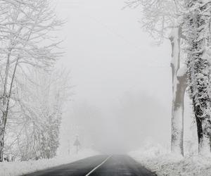 snow and by irantzu arbaizagoitia image