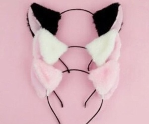pink, cat, and black image