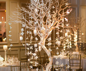 wedding, tree, and decor image