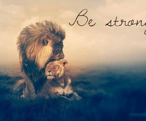 lion, animal, and be strong image