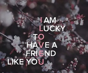 lucky, friends, and quote image