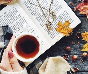 autumn, book, and tea image