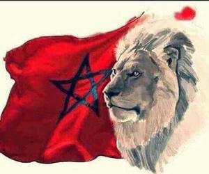 atlas, lion, and maroc image