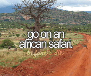 safari, africa, and before i die image