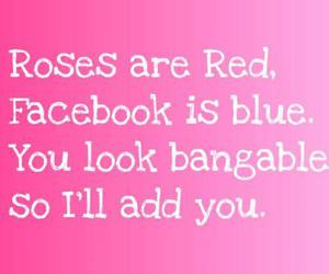 facebook, roses, and pink image