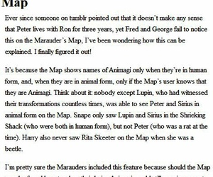 harry potter, ron weasley, and sirius black image