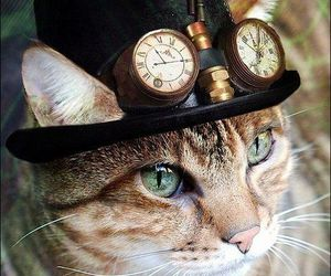 cat, steampunk, and animal image