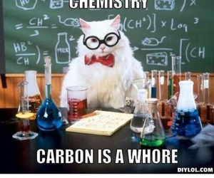 bitch, chemistry, and dying image