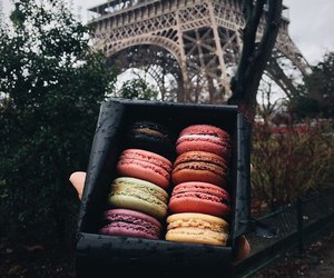 macaroons, paris, and food image