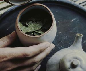 green tea and tea image