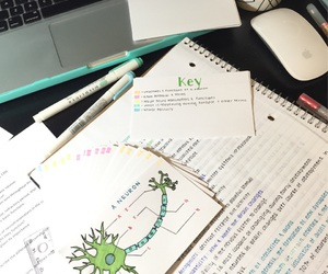 notes, study hard, and school motivation image