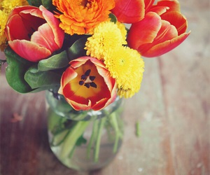 flowers, red, and orange image