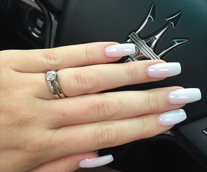 light pink, manicure, and nails image
