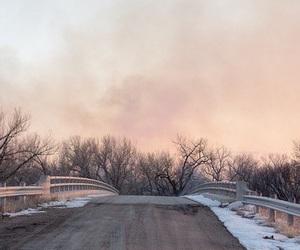 sky, winter, and bambi image