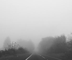black and white, dark, and fog image