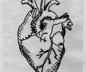 heart, drawing, and gif image