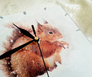 decoupage, squirrel, and wallclock image