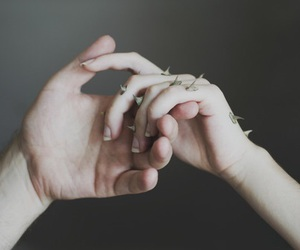 hands, thorns, and pale image