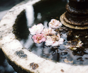 bees, flowers, and fountain image