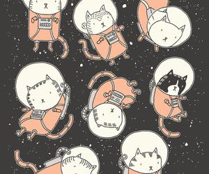 Gatos image