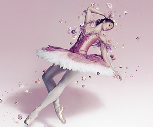ballet, dancer, and prima ballerina image