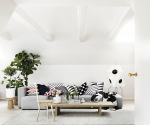 living room, pillows, and white image