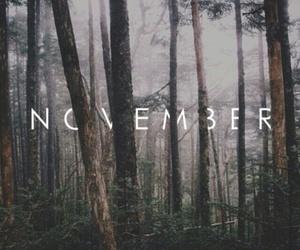 november, autumn, and nature image
