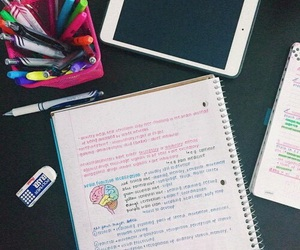 school, study, and note image