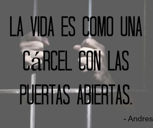 cancion, abiertas, and frase image