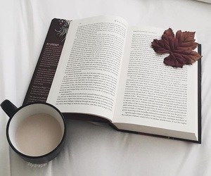 book, fall, and leaves image