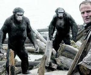 apes, human, and dpa image
