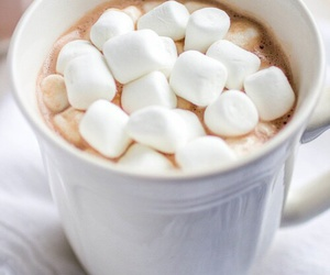 marshmallow, winter, and chocolate image