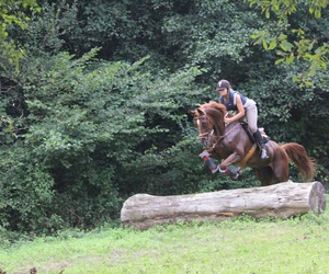 horse, jumping, and my image