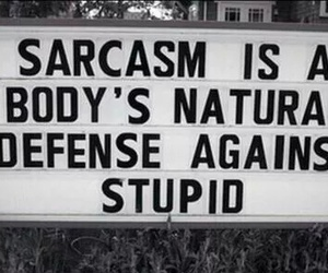 sarcasm, body, and stupid image