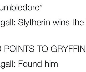 albus dumbledore, funny, and gryffindor image