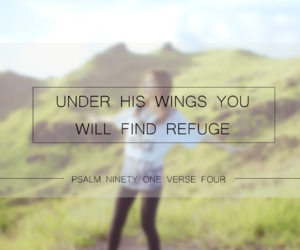 encouragement, faith, and wings image
