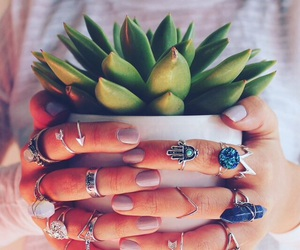jewelry, nails, and plant image